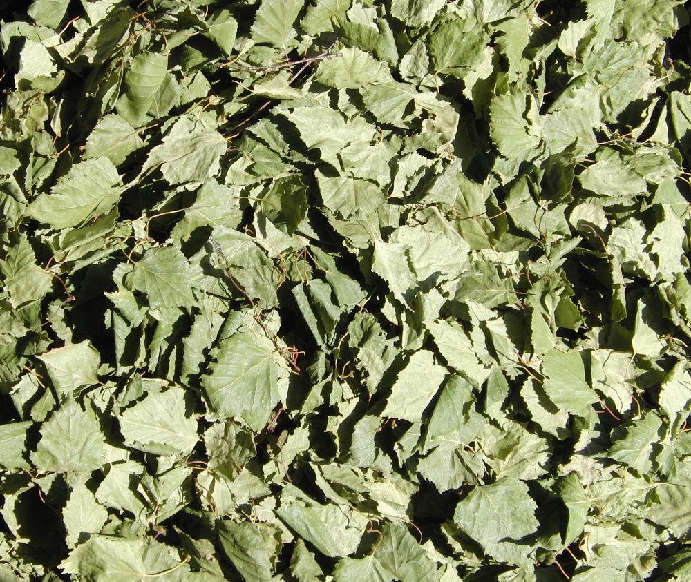 лепестки шиповника, травы деревенские
