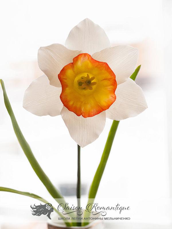 лепка цветов, холодный фарфор, нарцисс