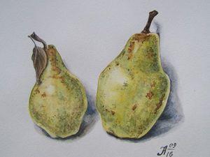 Рисуем груши акварелью. Ярмарка Мастеров - ручная работа, handmade.