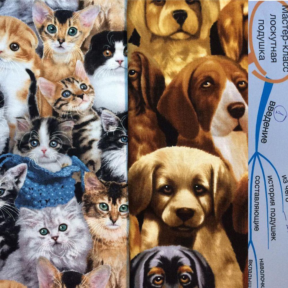кот, котик, котики, кошка, кошки, коты, коты и кошки, собаки, собака, пес, домашние животные, домашние питомцы, лоскутное шитье, лоскутное одеяло, лоскутная техника, лоскутное панно, мастер-класс, мастер-классы, мастер класс, печворк