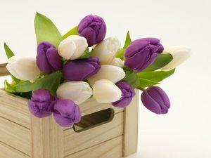 Поздравляем милых дам с праздником Весны!. Ярмарка Мастеров - ручная работа, handmade.