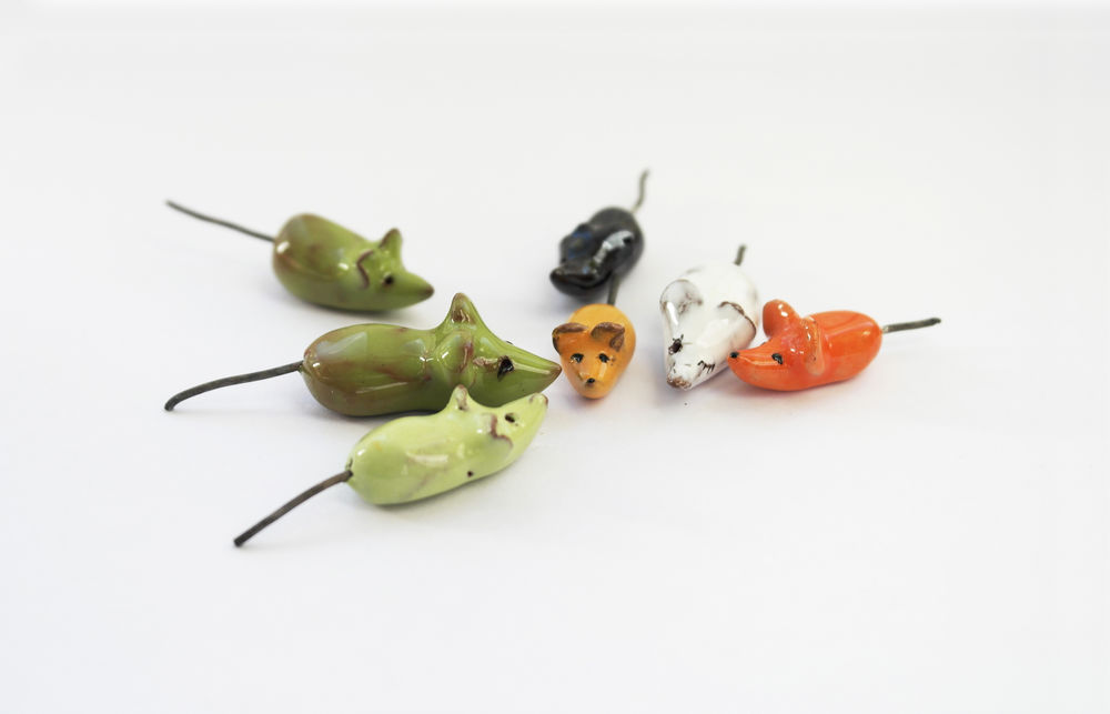 кошельковая мышь, мышка, подарок