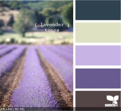 С чем сочетается лавандовый цвет