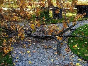 Осень...Грусть...А, может быть!. Ярмарка Мастеров - ручная работа, handmade.