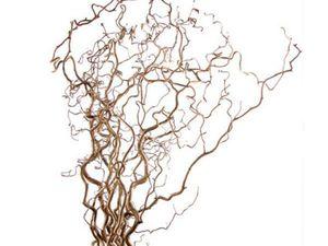 Корилус длиной 70 см в наличии! | Ярмарка Мастеров - ручная работа, handmade