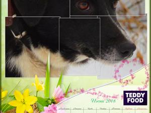 Календарь с собаками Teddy Food. Июнь. Ярмарка Мастеров - ручная работа, handmade.