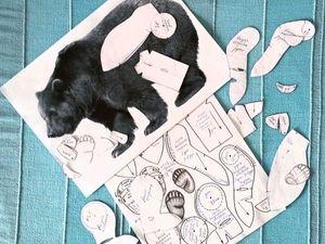Моделирование выкройки тедди   Ярмарка Мастеров - ручная работа, handmade