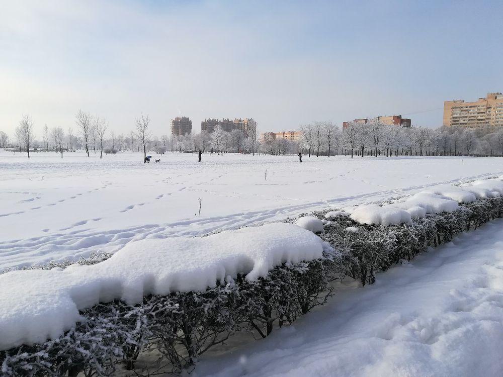 зима в петербурге, пошив пуховиков, теплая жилетка