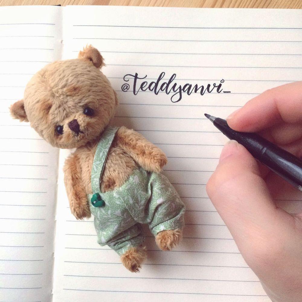 мишка в подарок, teddyanvi