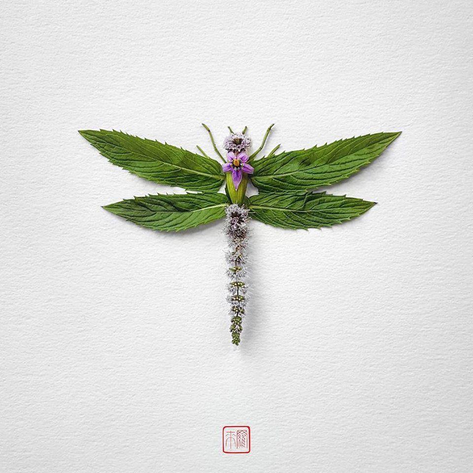Petal Magic: Unusual Compositions by Raku Inoue, фото № 9