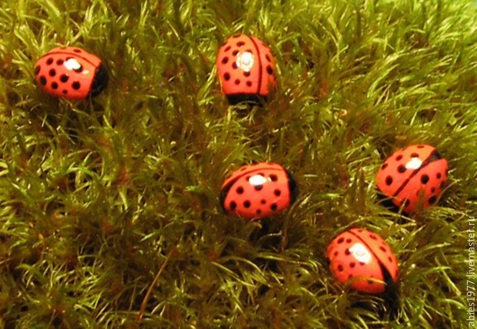 ladybug, из натуральных материалов, кофейное зёрнышко