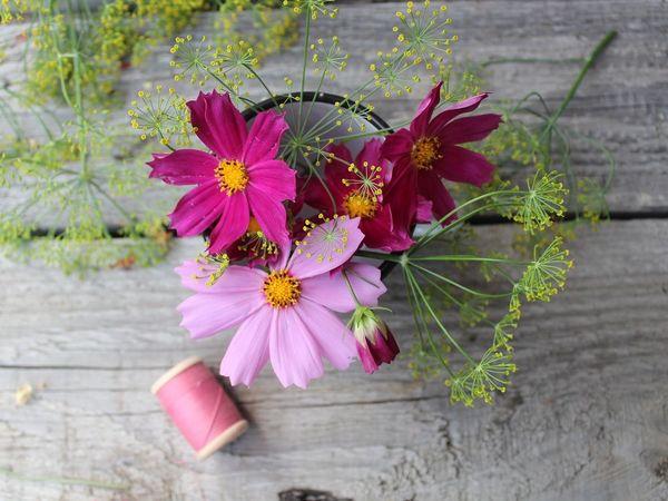 Космея - цветы из моего детства   Ярмарка Мастеров - ручная работа, handmade