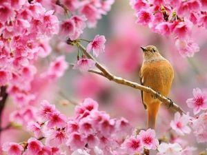Весна моей души.... Ярмарка Мастеров - ручная работа, handmade.