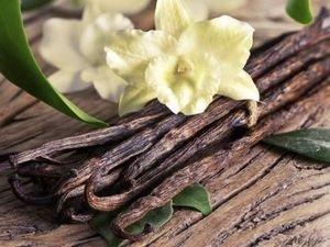 Изысканный и приятный аромат.Духи Ваниль.Сделай сам. Ярмарка Мастеров - ручная работа, handmade.