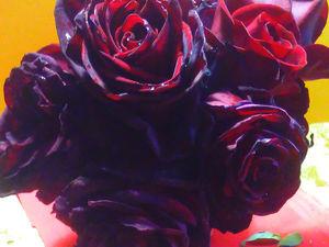 Крымские розы. Ярмарка Мастеров - ручная работа, handmade.