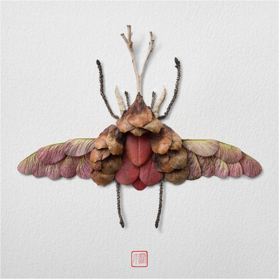 Petal Magic: Unusual Compositions by Raku Inoue, фото № 12