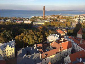 Золотая осень в Эстонии: отчет о поездке в Таллин в октябре 2016 г. | Ярмарка Мастеров - ручная работа, handmade