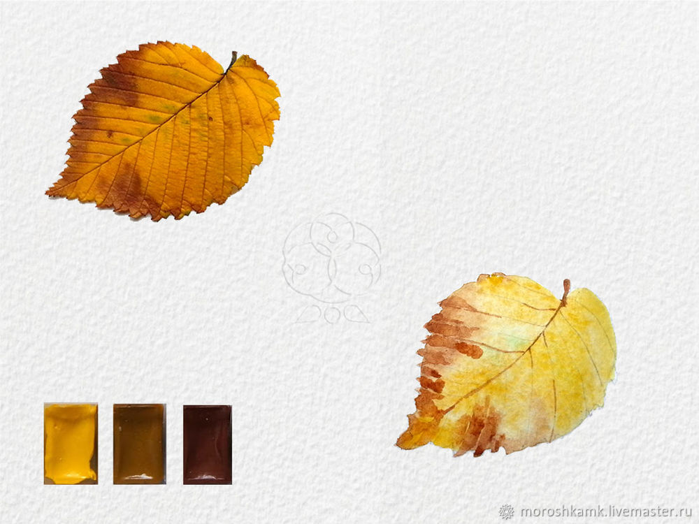 Drawing an Autumn Leaf with Watercolours, фото № 11