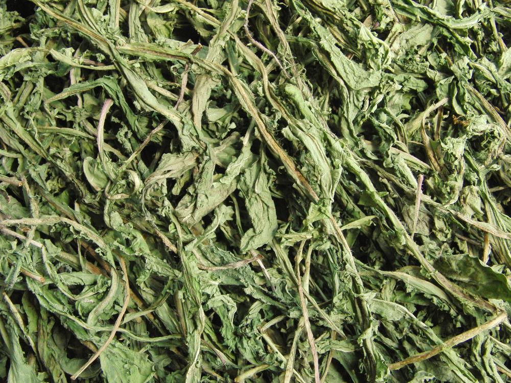 материца катюша, купить травы почтой, дикоросы травы, травяные чаи, одуванчик