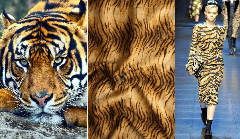 хлопок, хлопок-стретч, платье из хлопка, принт тигр, принты кошки, ткани из италии, ткани для одежды, юбка из хлопка-стретч, яркие принты