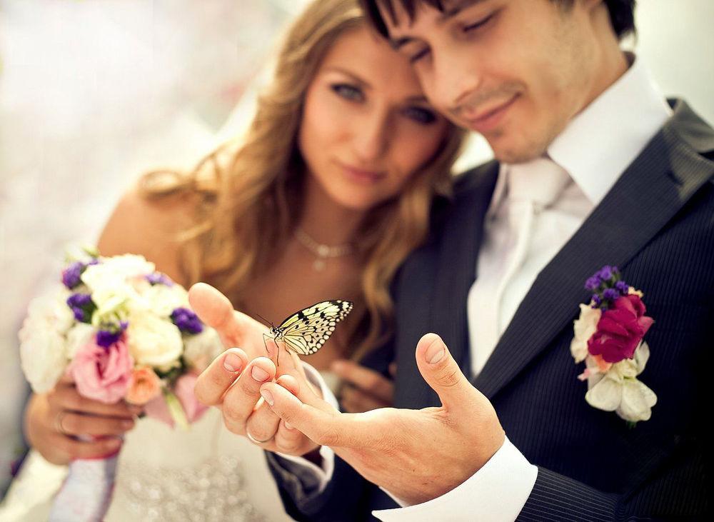 бабочки, брелки для ключей