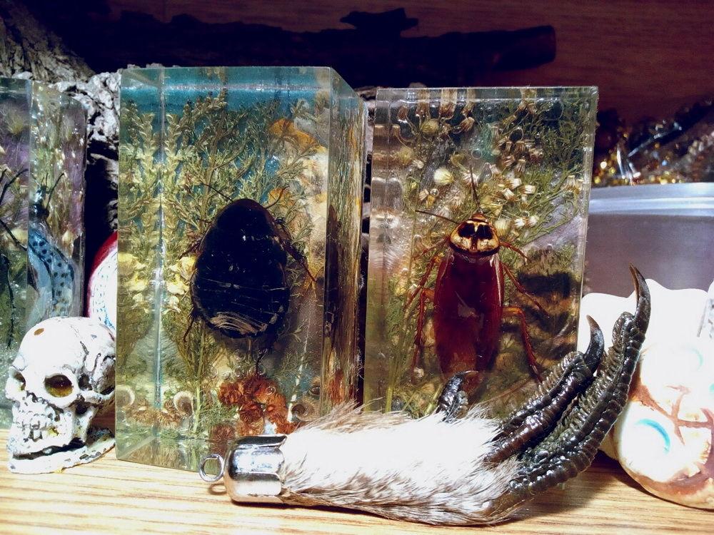 НЕбисерная лавка чудес: Лавочка алхимика