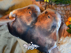 Подушки с невиданными зверями — капибарами). Ярмарка Мастеров - ручная работа, handmade.