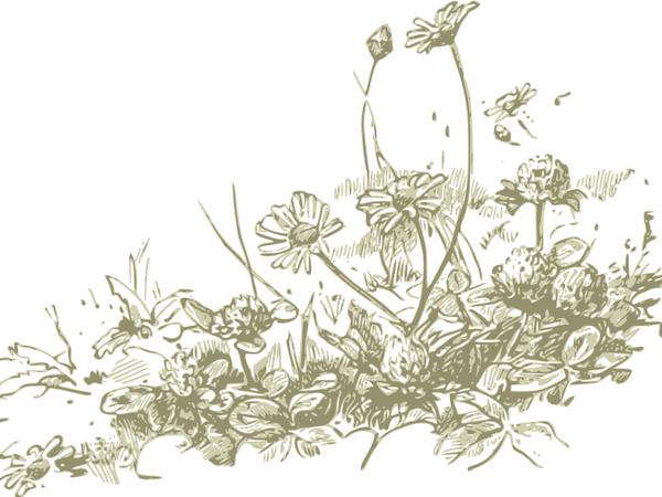 1900 подписчиков... Новинки... и продолжение конкурса)) | Ярмарка Мастеров - ручная работа, handmade
