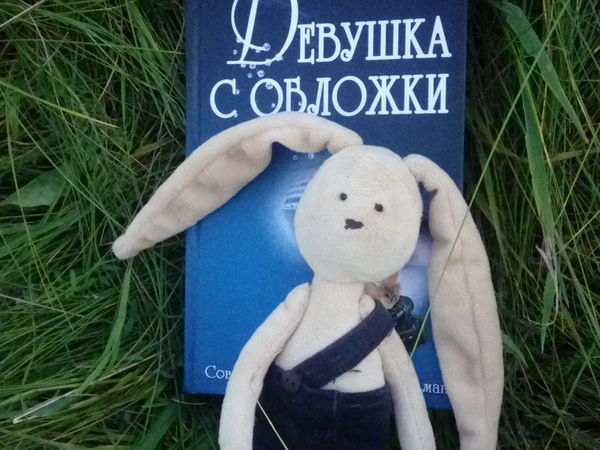 Каникулы Кроша в Беларуси   Ярмарка Мастеров - ручная работа, handmade