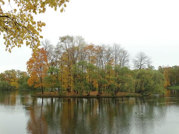 Осень в Царском селе | Ярмарка Мастеров - ручная работа, handmade