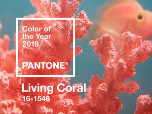 Pantone Color Institute Named the Main Color of 2019. Livemaster - handmade