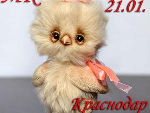 Цыпленок-тедди, Краснодар, 21.01   Ярмарка Мастеров - ручная работа, handmade