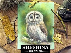 Видеоурок: рисуем сову сухой пастелью. Ярмарка Мастеров - ручная работа, handmade.