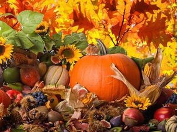 Распродажа «Осеннее изобилие»!!!! | Ярмарка Мастеров - ручная работа, handmade