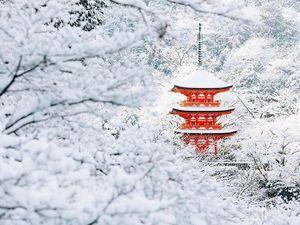Снегопад превратил Киото в зимнюю страну чудес | Ярмарка Мастеров - ручная работа, handmade