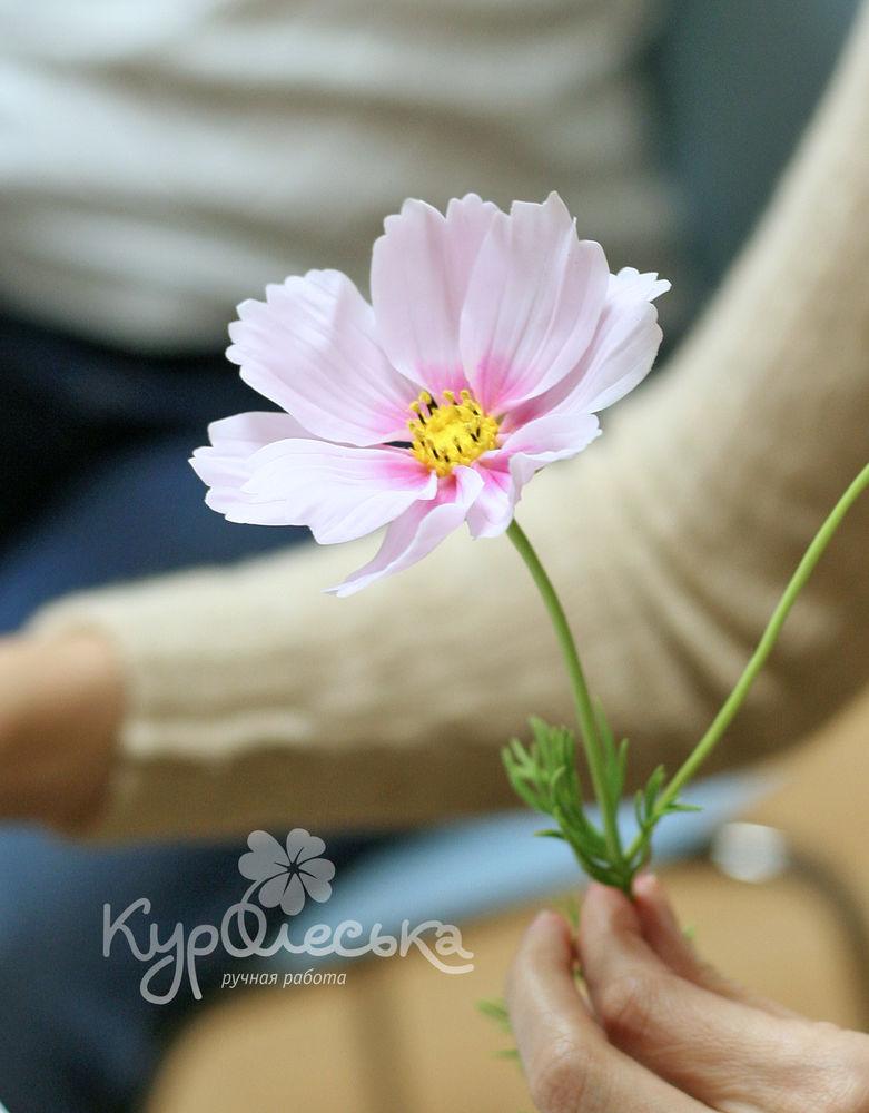 лепка цветов москва
