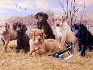 Собаки на полотнах известных художников. Ярмарка Мастеров - ручная работа, handmade.