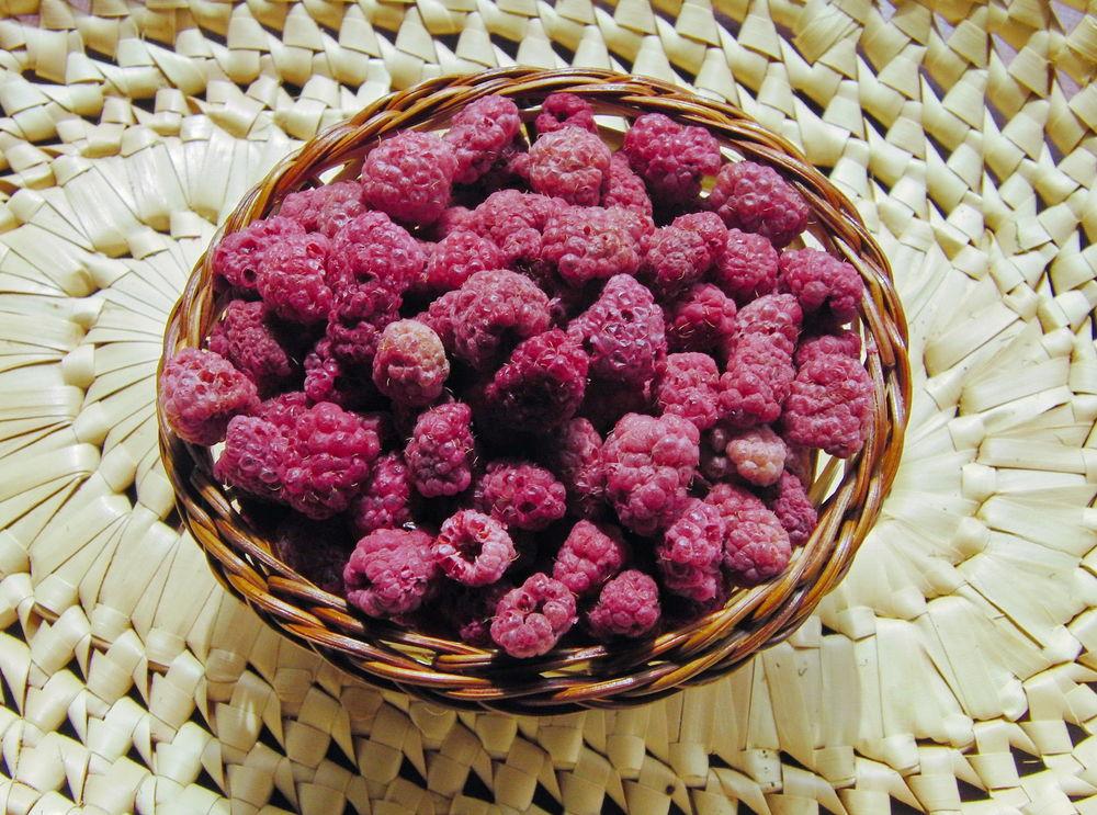 дикие плоды