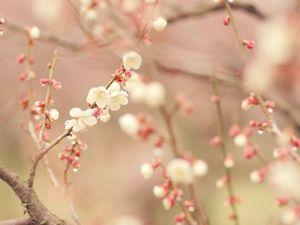 О работах в наличии, грядущей весне и празднике и обо всем понемножку)). Ярмарка Мастеров - ручная работа, handmade.