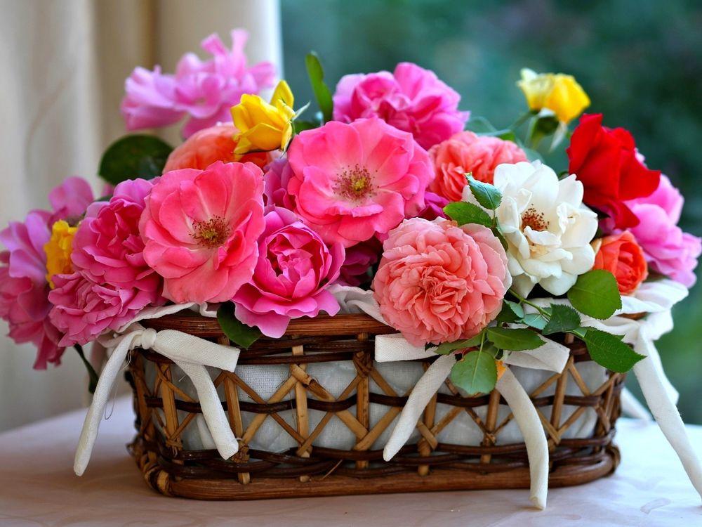 С праздником открытки с цветами