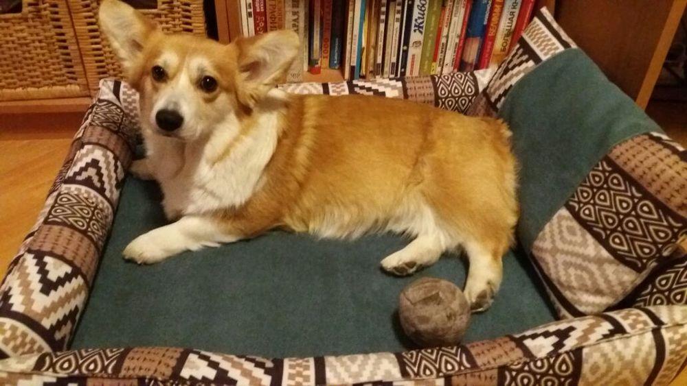 лежанка для собаки, ручная работа, сон