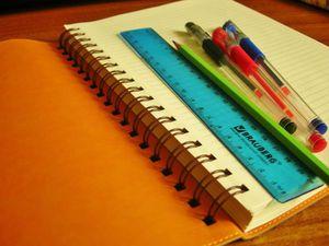 Что такое «кондуит», или Каким должен быть идеальный ежедневник. Взгляд учителя. Ярмарка Мастеров - ручная работа, handmade.