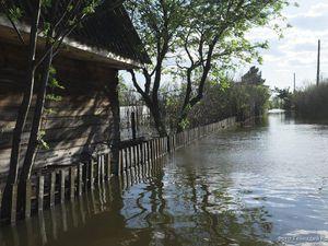 Ишимский паводок. | Ярмарка Мастеров - ручная работа, handmade
