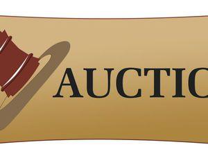 Аукцион без правил! Анонс. | Ярмарка Мастеров - ручная работа, handmade