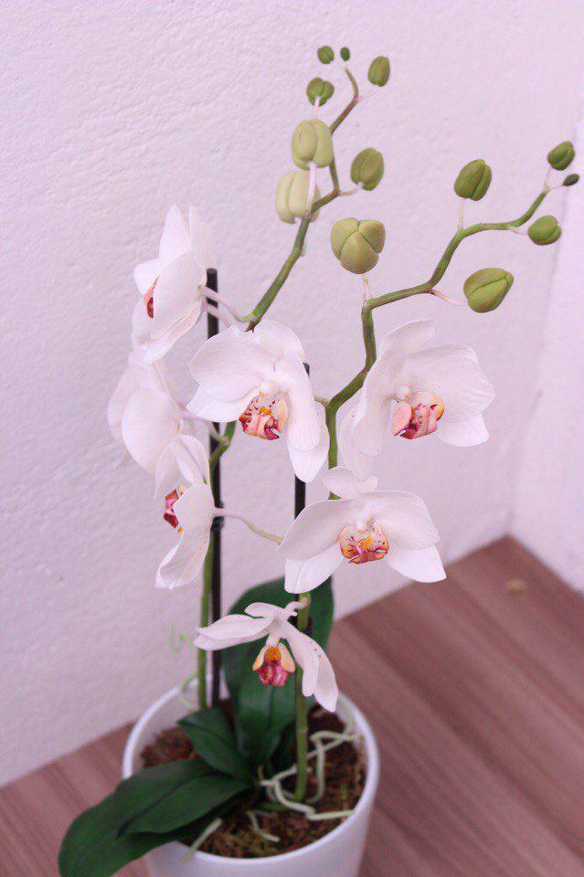 мк для начинающих, цветы ручной работы