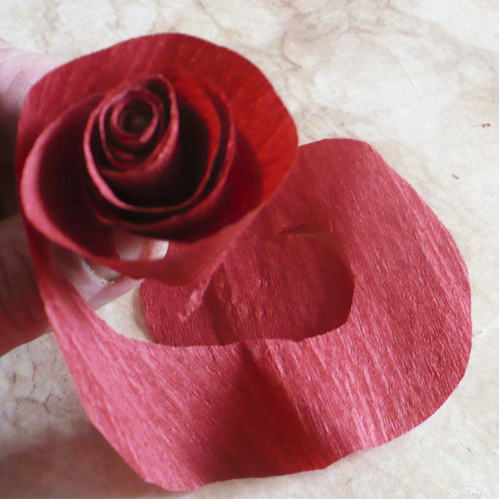 одноклассницам, букет роз