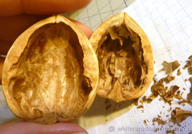 скорлупа ореха