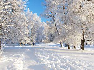 В блоге проходит конкурс коллекций Зимняя Сказка | Ярмарка Мастеров - ручная работа, handmade