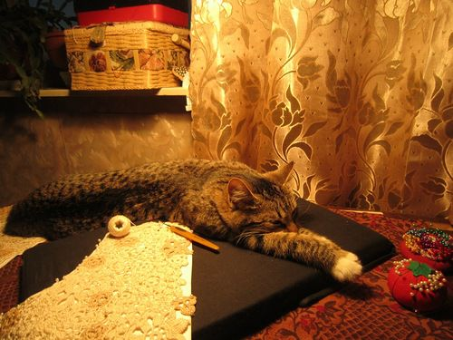 Ну как без кошек???, фото № 7