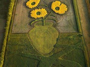 Удивительная полевая живопись Стена Херда. Ярмарка Мастеров - ручная работа, handmade.
